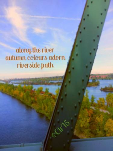next bike path autumn