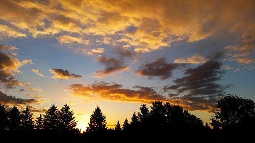 autumn fall sunrise dawn photo midmichigan