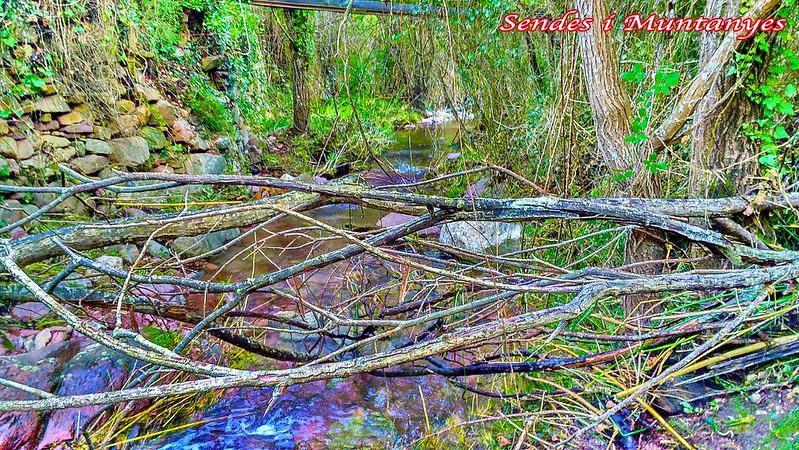 barranco-aguas-negras---algimia-almonacid