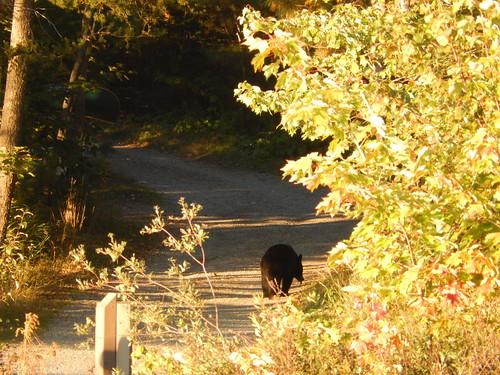 Killarney PP - beer bij George Lake