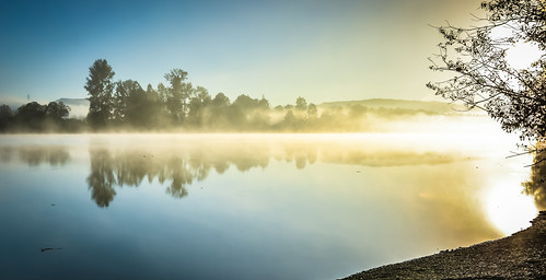 blue sun tree water yellow fog reflections river nikon bc view bright foggy sunny columbia steam british fraser