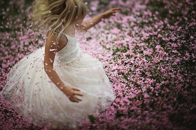 Flowers flowers everywhere...