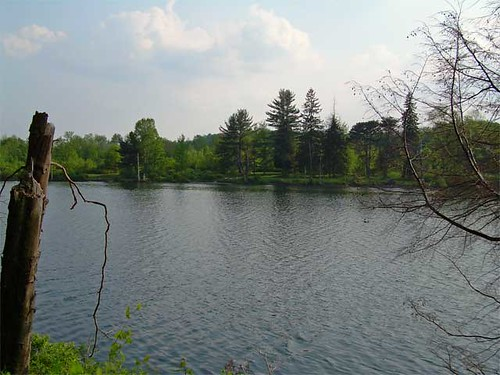 lake ny water geotagged sullivan roscoe crystallake geolat4187142 geolon7502388