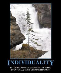 Demotivation: Individuality