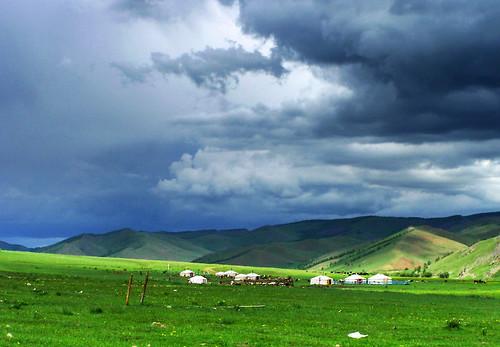 the mongolian backyard