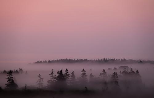 ca morning trees house mist canada sunrise haze novascotia view kingsburg riverport dscf1351