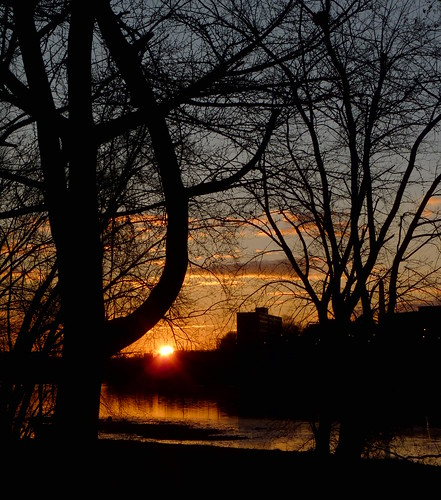 sunrise sky silhouette trees river reflection winter newyearsday raritanriver rutgersuniversity johnsonpark piscataway middlesexcounty nj newjersey fav10