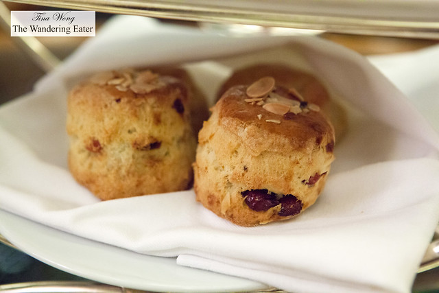 Fresh baked scones (cranberry and plain)
