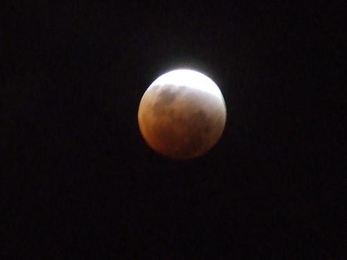 Blood moon | by Trippleknz