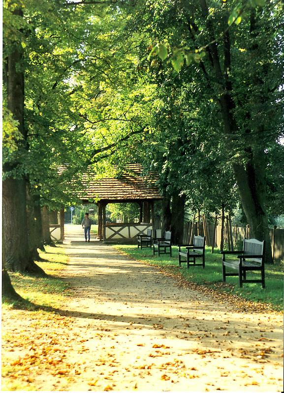 Königsberg, Bleichdamm