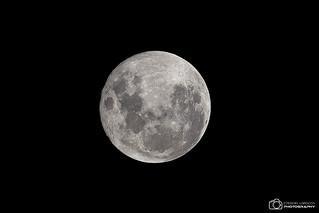 Full Moon - 12/01/2017 | by Eze2kiel