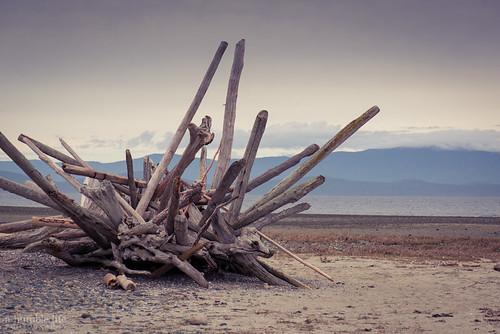 beach driftwood landscape mountain ocean rathtrevor sculpture vancouverisland parksville britishcolumbia canada ca