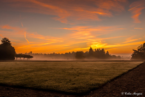 november trees mist grass clouds sunrise hotel lawn grounds oxfordshire crowneplaza 2015 heythrophall room2035
