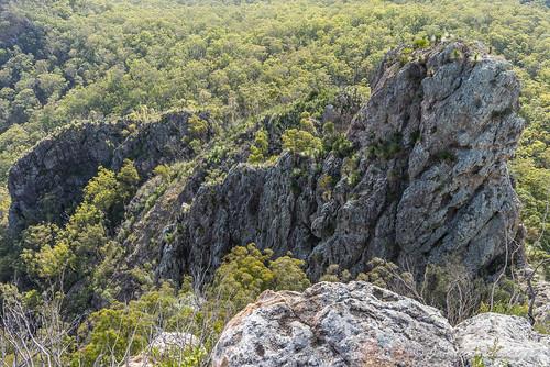 trees mountain clouds plaque landscape rocks track rocky australia ridge trail bushwalking qld queensland geology bushwalk ipswich pinnacle grasstrees volcanicplug 2015 xanthorrhoea bushwalkers seqld flinderspeak flindersgoolmanconservationestate rhyolitepeak sonya7r