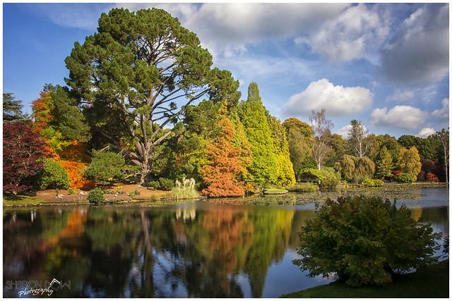 A Beautiful Autumnal Day