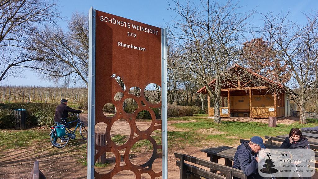 Schönste Weinsicht am Rhein (Brudersberg)