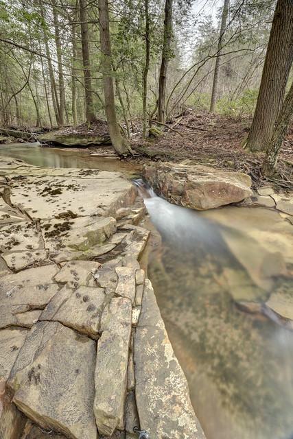 Little Laurel Creek, Bridgestone Firestone Centennial Wilderness WMA, White County, Tennessee 1