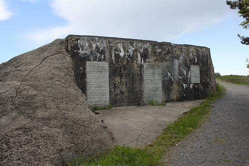 Bolærne fort (129)