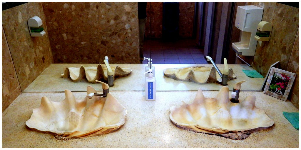 Giant Clam Shell Sinks In The Men S Room Move Over Sam S