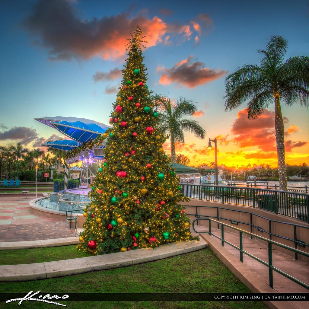 Florida Christmas.Christmas Tree Harbourside Place Sunset Jupiter Florida Flickr