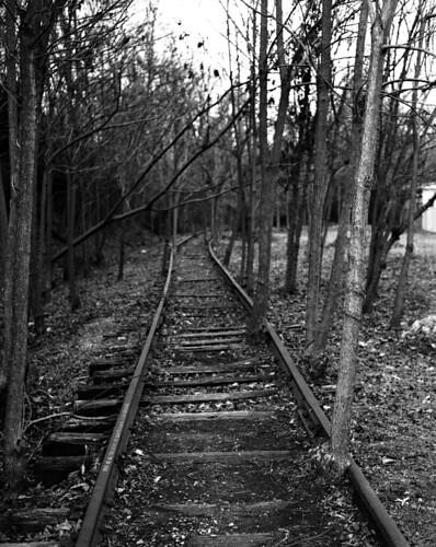 railroad tracks abandoned downtown bulldurham northcarolina piedmont trees blackandwhite blancetnoir mediumformat 120 rollfilm negative tmax100 stand development xtol rodinal rapidomega100 6x7