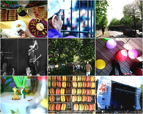 collage   by joanna.suomalainen