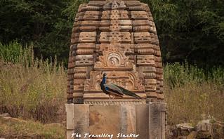 Bateshwar Temple (22) | by travelling slacker