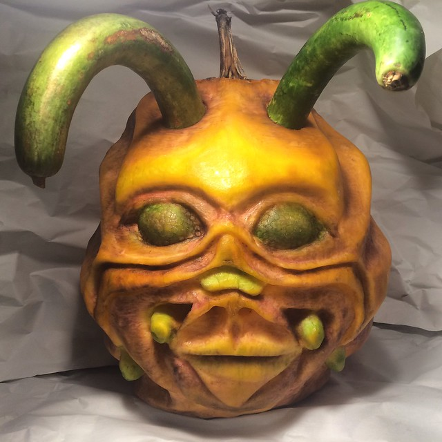 Pumpkin 9 2015
