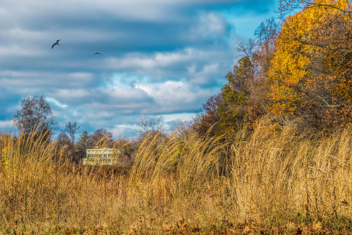 autumn sky house fall nature field clouds reeds landscape scenic historical marsh marshlands jayhouse
