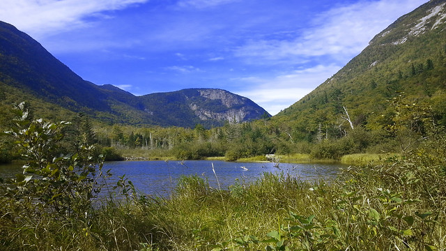 View from Willey Pond