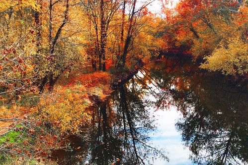 usa illustration landscape fallcolors maryland digitalpainting