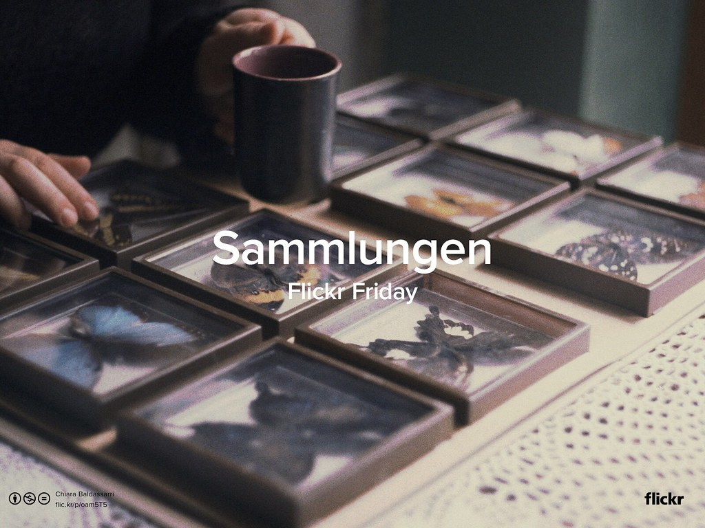 Flickr Friday: Sammlungen