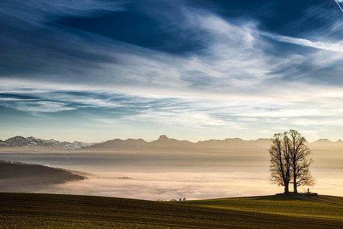 baum berg berge bäume flickr klima landschaft meteorologie natur nebel stockhorn treemendoustuesday wetter brouillard climateweather fog landscape landscapes meteorology mist montagnes mountain mountains nature nebbia niebla tree trees