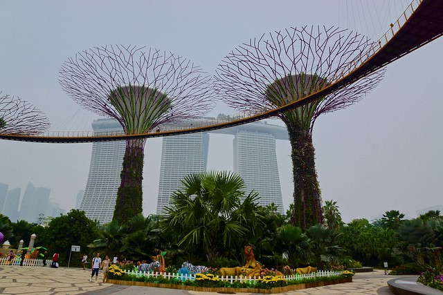 Supertree grove in the Gardens by the Bay with OCBC skywalk and the Marina Bay Sands hotel in Singapore