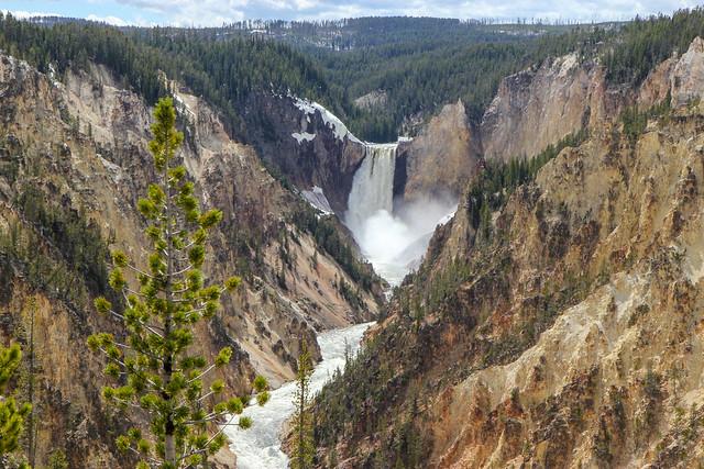 Yellowstone - Grand Canyon of the Yellowstone