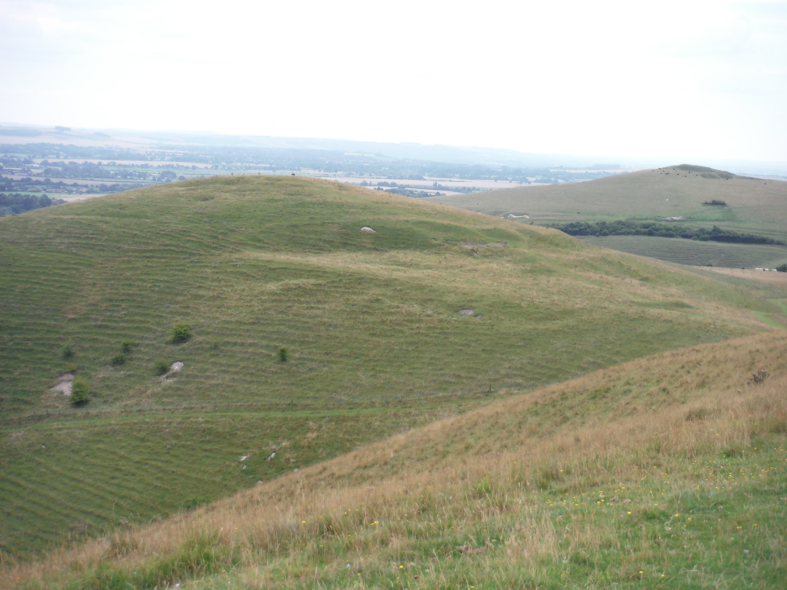 Knap Hill and Walkers Hill SWC Walk 127 Pewsey Circular