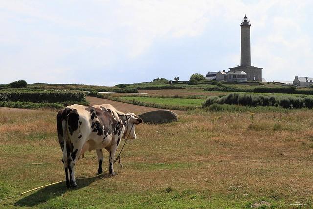 Le b.a.-ba du far breton