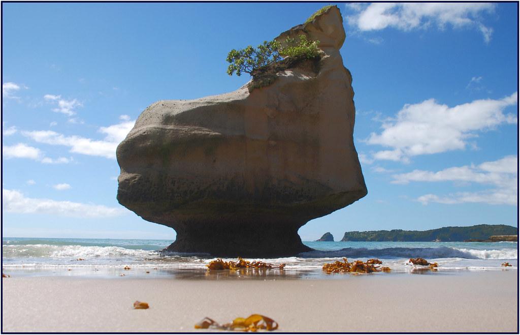 Te Whanganui-A-Hei / Cathedral Cove