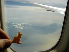 skippy's last sighting of australia