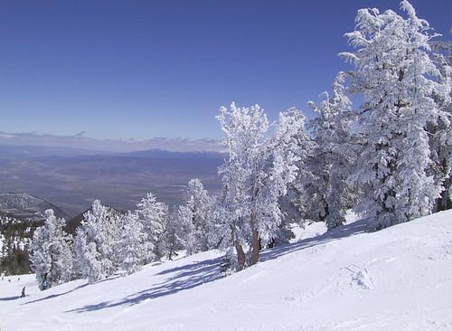 Skiing | by wka