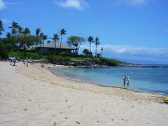 Mo Maui