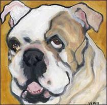 Ubulldog