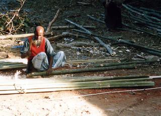 Bamboo Hut #1