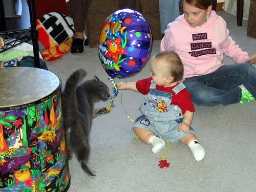 Toby Shares with Kitty