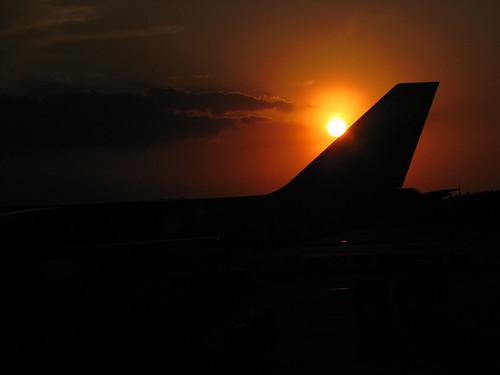 Sun Behind Tail