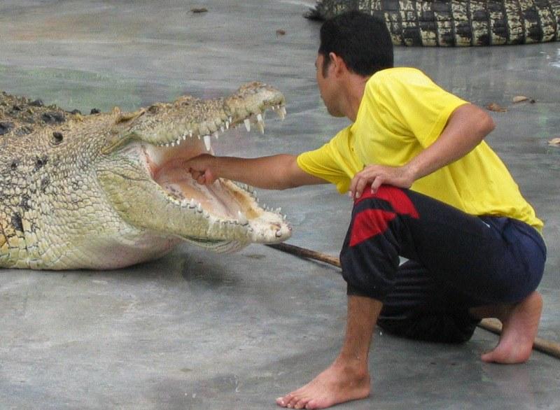 Langkawi Crocodile Farm, Taman Buaya Langkawi   Website info…   Flickr