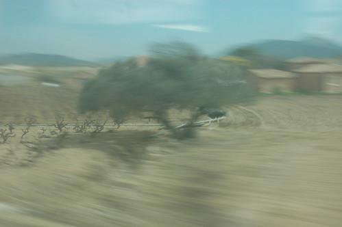 blur sharp blur 2