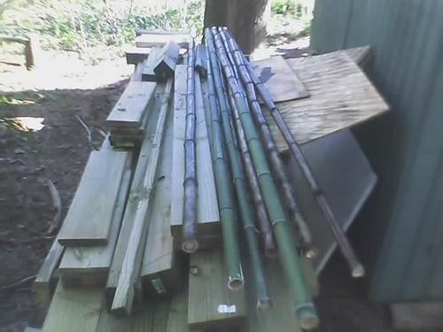 Bamboo Poles @  Clyde Shepard  nature pr