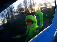 Kermit flying first-class