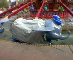 A moment of silence for the dead dumbo
